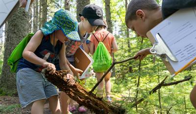Nature Investigators Camp:Decoding Nature-Age 6-9