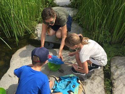 Adventure Day at the Gardens: Wet & Wild-Age 6-12