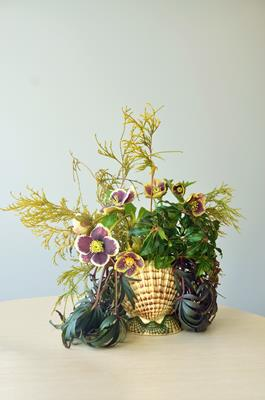 Seasonal Designs: From Garden to Table